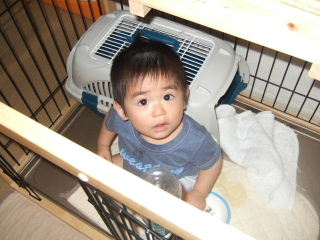 2009_062920096月予防接種0004.JPG